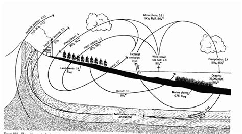 simple water diagram simple water cycle katy perry buzz