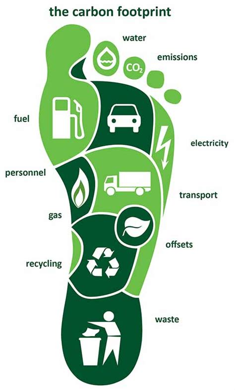 carbon footprint template how to calculate your carbon footprint