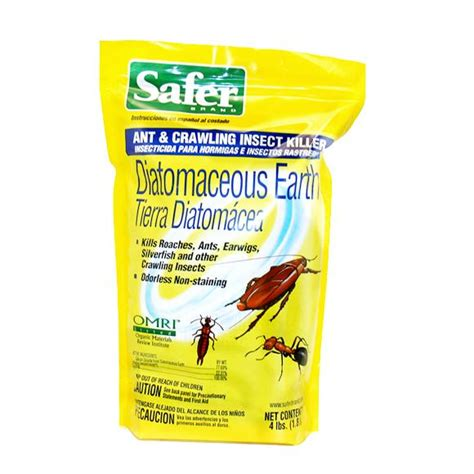 bed bug powder diatomaceous earth amazon com safer brand 51702 diatomaceous earth bed bug