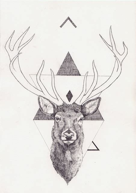 animal head tattoo tumblr peter carrington art inspiration moon and trees a