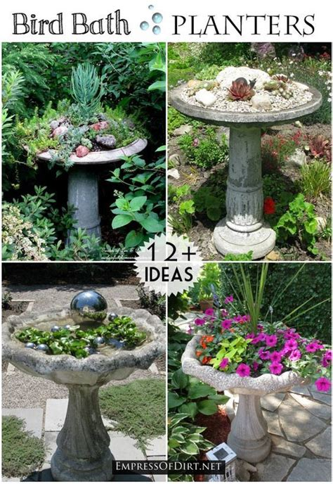 Bird Planters by 17 Best Images About Teacup Planter Ideas On