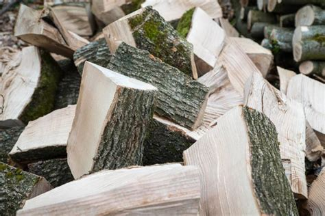 best firewood for fireplace heat values and wood burning tips best firewood for