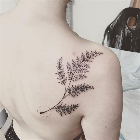 fern tattoos design best 25 fern ideas on pattern design