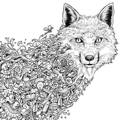 coloring pages for adults fox coloring coloring pages and doodles on