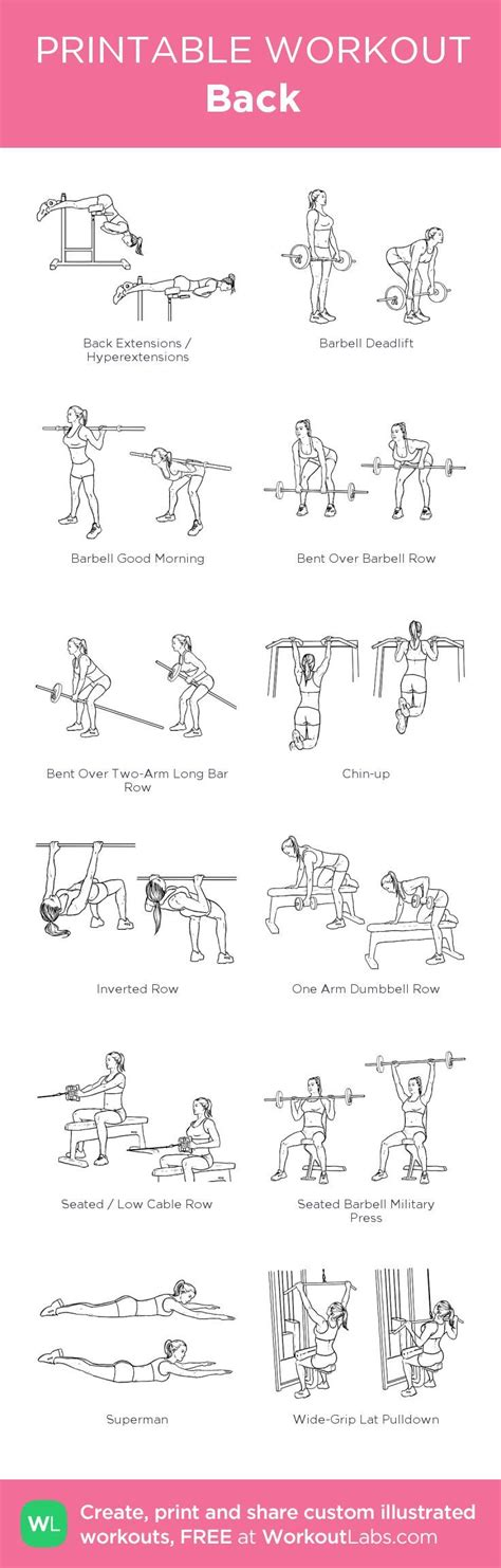 printable exercise program 25 best ideas about back workout routine on pinterest