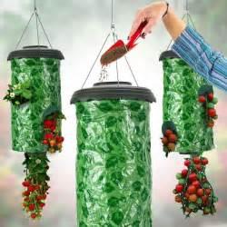 potagers suspendus fraises achat vente carr 233 potager