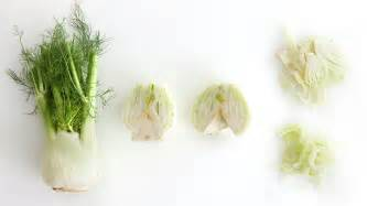 how to cut a fennel bulb tv how to s and ideas