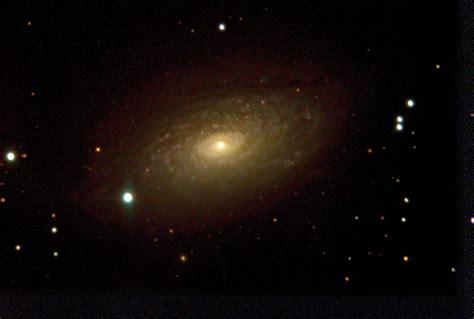 Sunflower Field m63 sunflower galaxy flc observatory