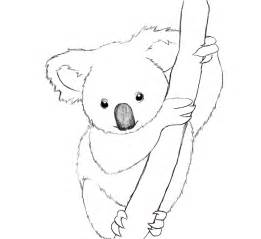 koala coloring pages printable koala coloring pages coloring me