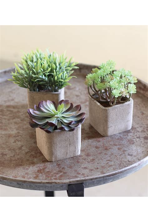 pots for succulents for sale set of 3 small artificial succulents in square pots