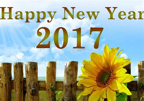 Happy new year 2017 wallpapers happy new year 2017 images wishes