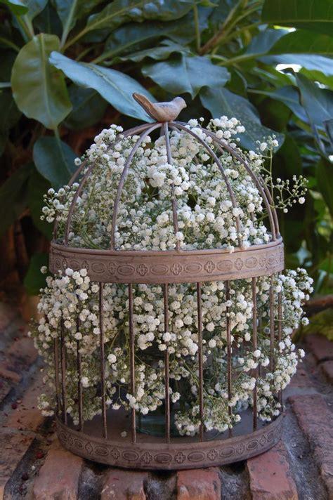 ideas para decorar con jaulas jaula flores casilda se casa jaulas decoradas