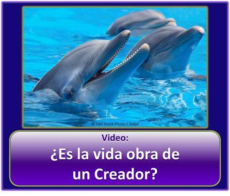 jw org presentaciones de este mes 1000 ideas about jw org spanish on pinterest