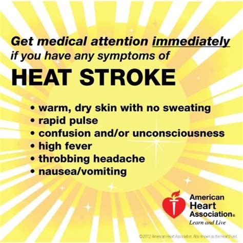 heat stroke signs heat exhaustion and heat stroke are dangerous so make sure you images frompo
