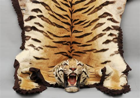 faux tiger skin rug tiger skin rug with rugs ideas
