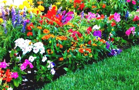 Plan Flower Garden The Diy Beautiful Flower Bed Designs And Plans For Your Adorable Garden Plans Perennials Flowers