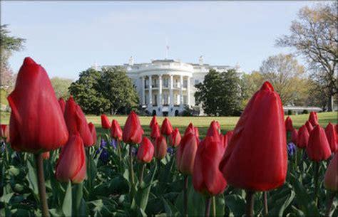 Flower Garden Contest White House Flowers