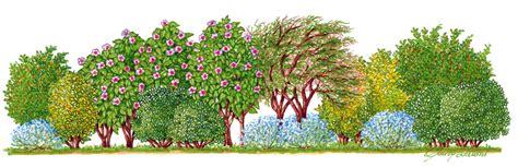 www giardini biz piante siepi noleggio arredi e attrezzature per eventi
