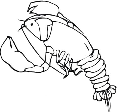 Pin Crawfish Coloring Pages To Color On Pinterest Crawfish Coloring Page