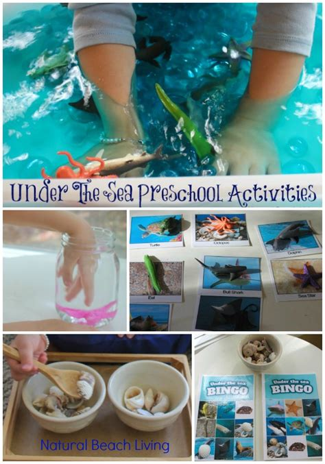 kindergarten activities under the sea the best under the sea preschool activities natural