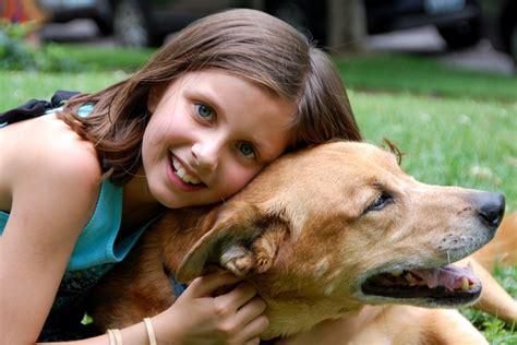 do dogs like hugs do dogs like to be hugged