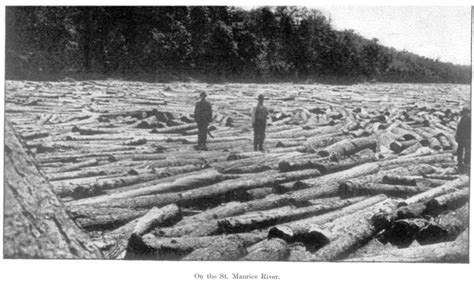 scfc history of forest industry forest history forestry