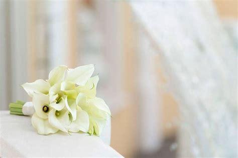 fiori calle bianche significato calla significato fiori linguaggio dei