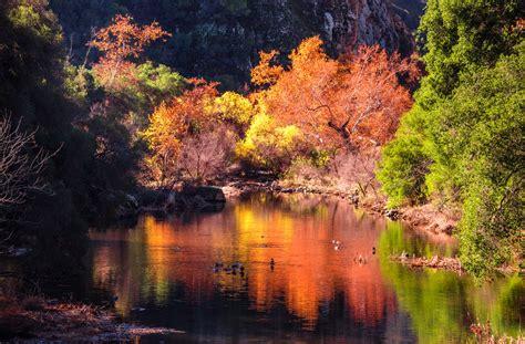 fall colors california california fall colors autumn leaves in california flickr