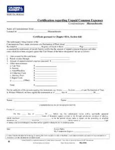 6 d certificate fill online printable fillable blank