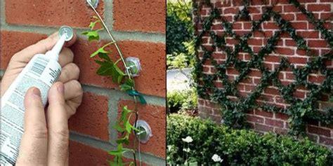 cheap diy garden ideas cheapest diy garden ideas you should do this autumn 2