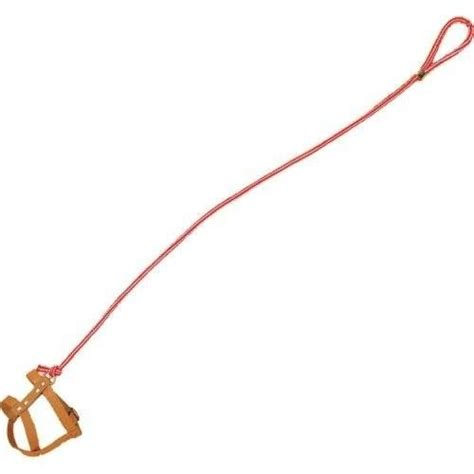 invisible leash leash the o jays and how to make an on