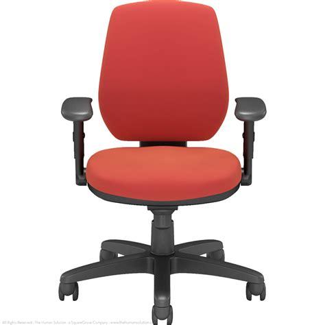 Ergonomics Chair by Via Riva Ergonomic Task Chair