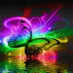 Image   Rainbow butterfly 1 .gif   Whatever you want Wiki   Wikia
