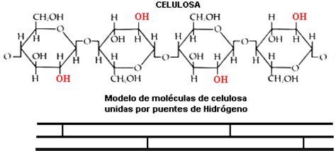 cadenas navarra significado las biomol 233 culas 2 186 bachillerato cosas de ciencias