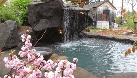 Backyard Rescue Pools Custom Pool Waterfalls Water Features Ponds Backyard