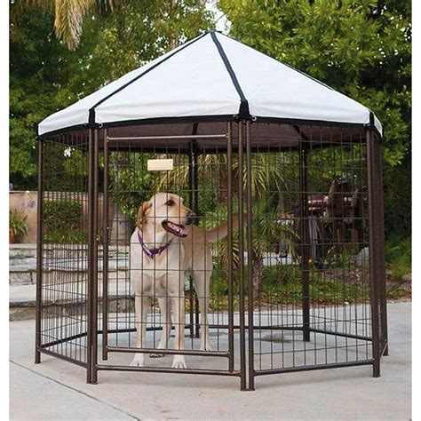pet gazebo the pet gazebo kennel 221084 kennels beds at
