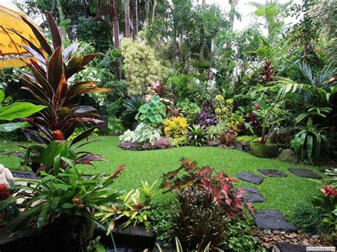 tropical plants for backyard 25 unique tropical garden design ideas on