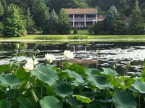 chapel hill bed and breakfast chapel hill bed and breakfast nc b b reviews tripadvisor