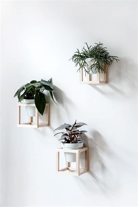 diy hanging plant holder wall decor home inspiration