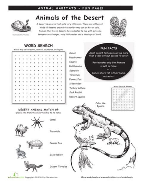 Habitats Worksheets 2nd Grade by Animal Habitats Worksheets Education