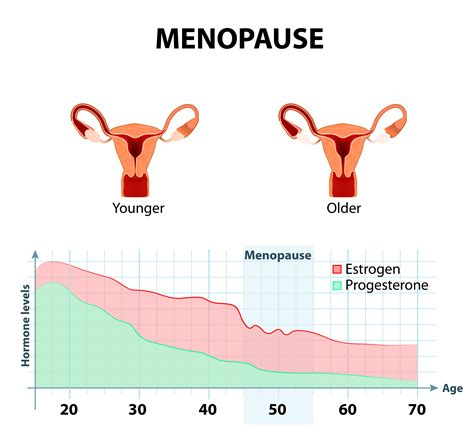 Sindroma Menopause by Strength Menopause What To Expect
