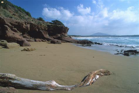 porto ferro sardegna digitallibrary immagini spiaggia di porto