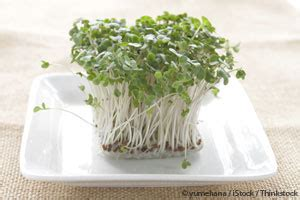 broccoli sprouts help detoxify environmental pollutants