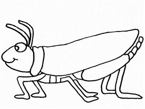 cute coloring page grasshopper coloring pages