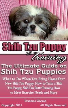 are shih tzu easy to potty tear stains in shih tzu dogs puppy stains for dogs and maltese