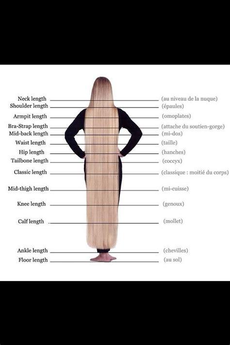 hair length chart hair length chart lovely long locks