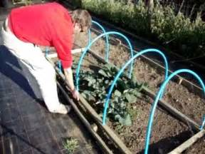 Raised Garden Bed Frames - how to make a portable netted hooped crop amp plant protecting cloche keeps out birds