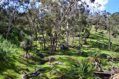 best western australia the 5 best hikes near perth western australia