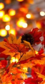 autumn foliage booknvolume