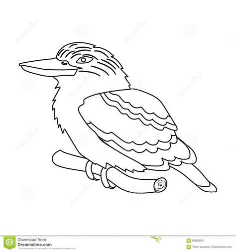 kookaburra coloring page free kookaburra sitting on branch icon in outline style